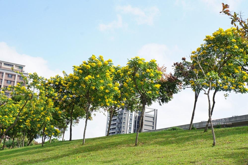 20181114232452 98 - [桃園景點]青塘園地景  乘載著夢想的桃機一號  超萌的送子鳥送來幸福 還有適合野餐的大草原