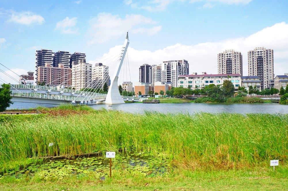 20181114232457 96 - [桃園景點]青塘園地景  乘載著夢想的桃機一號  超萌的送子鳥送來幸福 還有適合野餐的大草原