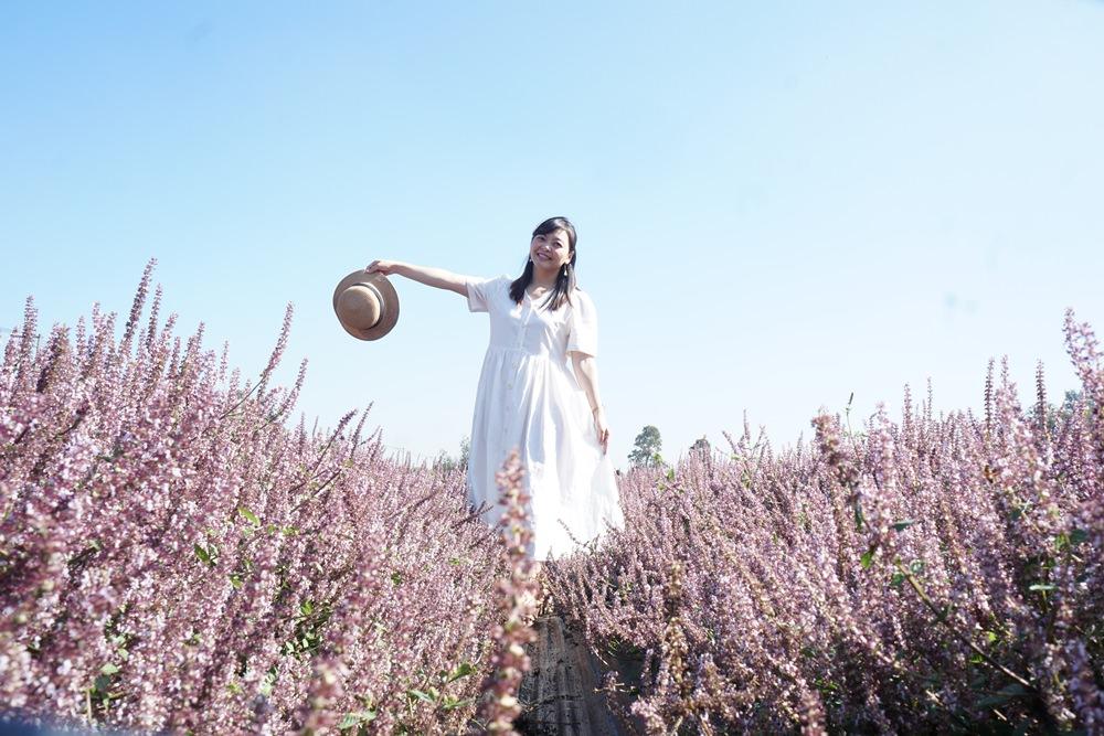 20181203234340 34 - [桃園花彩節]紫色仙草花田夢幻登場  一起拍出日雜感照片