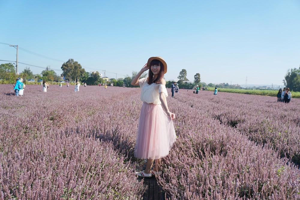 20181203234550 87 - [桃園花彩節]紫色仙草花田夢幻登場  一起拍出日雜感照片