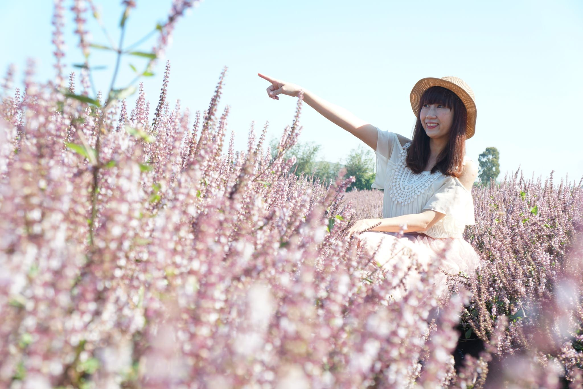 20181203234645 96 - [桃園花彩節]紫色仙草花田夢幻登場  一起拍出日雜感照片