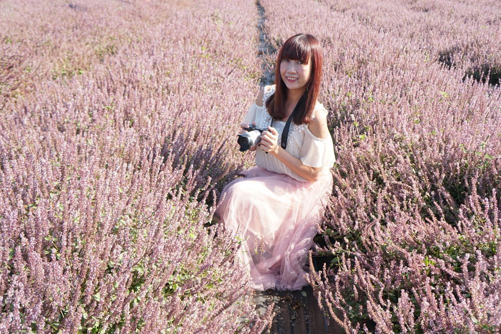 20181203234824 34 - [桃園花彩節]紫色仙草花田夢幻登場  一起拍出日雜感照片