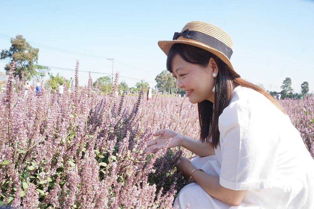 20181203234852 92 - [桃園花彩節]紫色仙草花田夢幻登場  一起拍出日雜感照片