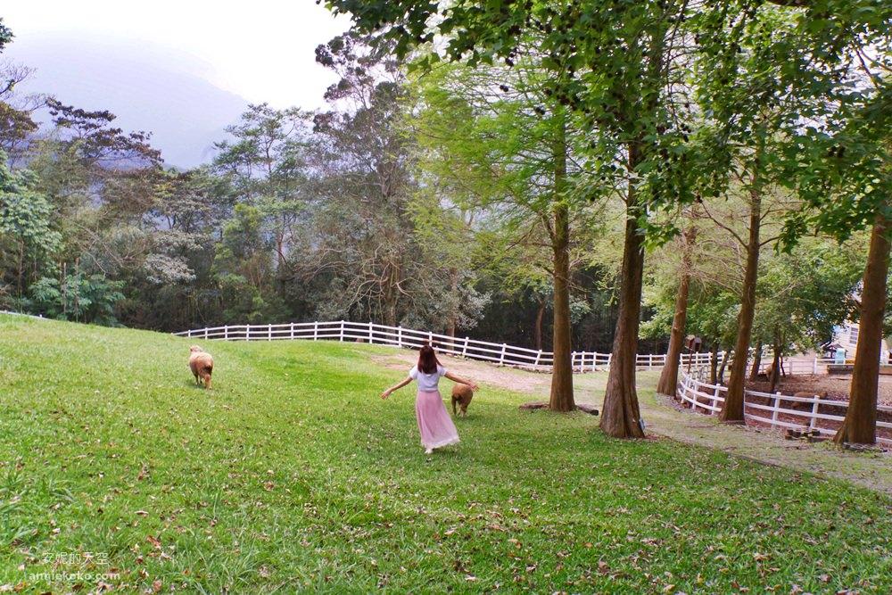 20190421171928 15 - 熱血採訪 [桃園旅遊]綠光森林綿羊牧場 一泊二食 親近羊群擁抱山林 被施了快樂魔法的森林牧場