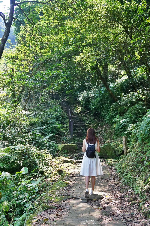20190530225406 39 - [新店景點 銀河洞越嶺步道 ]全台北最仙氣的步道 來一場與飛瀑共舞的山林之旅