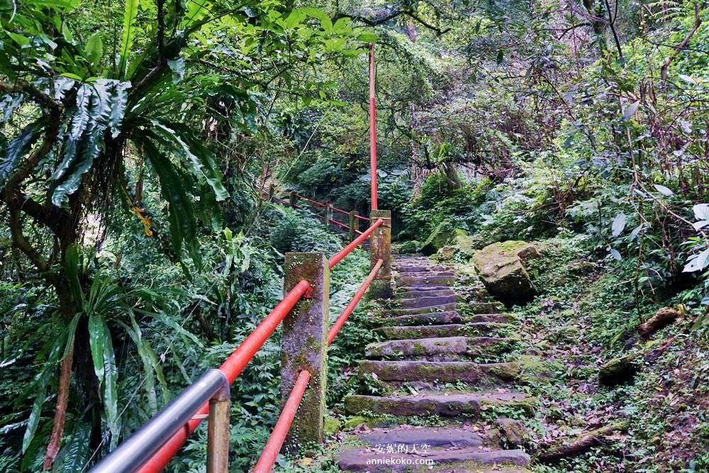 20190530225506 30 - [新店景點 銀河洞越嶺步道 ]全台北最仙氣的步道 來一場與飛瀑共舞的山林之旅