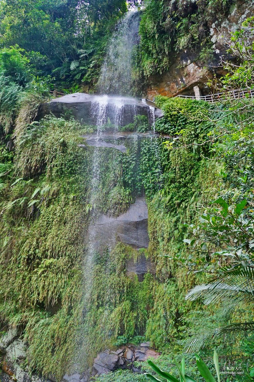 20190530225515 70 - [新店景點 銀河洞越嶺步道 ]全台北最仙氣的步道 來一場與飛瀑共舞的山林之旅