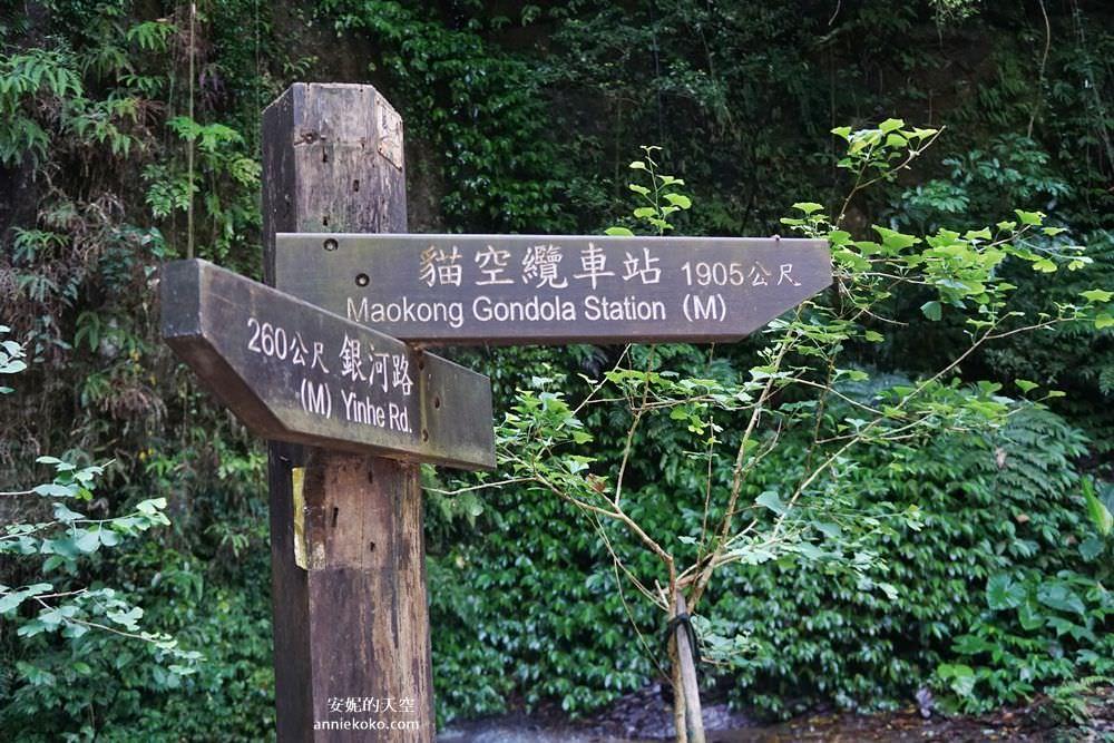 20190530225655 46 - [新店景點 銀河洞越嶺步道 ]全台北最仙氣的步道 來一場與飛瀑共舞的山林之旅