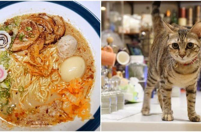 [三重神秘小店  23私房拉麵 ]一天僅賣23碗麵 店內還有隱藏版白酒招待 萌貓店長陪你一起吃拉麵
