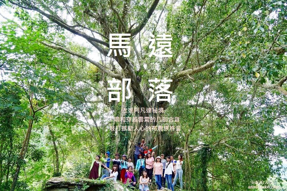 [花蓮 馬遠部落] 布農族杵音文化 走進阿凡達秘境唱和八部合音 最療癒的部落森林之旅