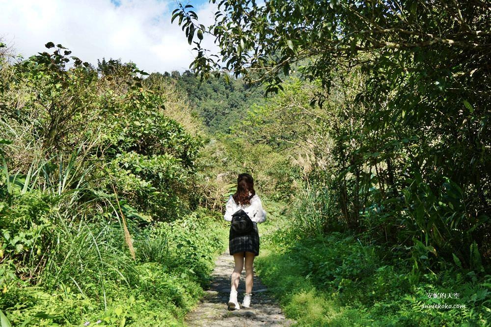 宜蘭步道北橫森呼吸一日遊|明池森林步道x九寮溪森林系步道之旅