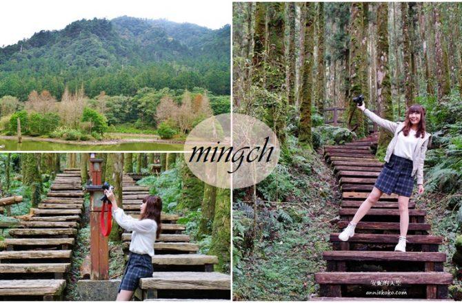 [宜蘭北橫 森呼吸一日遊 ]明池森林遊樂區 九寮溪 森林系步道之旅 跟著奧丁丁體驗旅行去