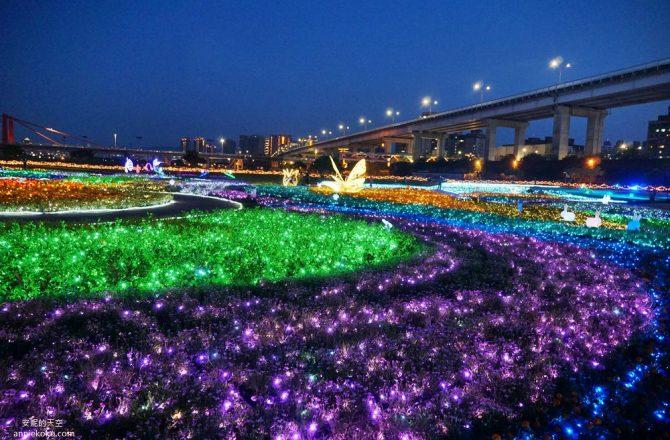 [板橋蝴蝶公園 2020新北河濱蝶戀季]是精靈降落的夢幻境地吧 新北最美光雕地景藝術
