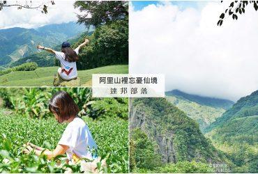 [阿里山 達邦部落 maezo生活-部落美製造所 ]這裡是忘憂部落吧! 隱藏山谷裡的仙境茶園  充滿傳奇故事的奇幻步道
