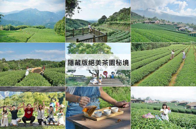 這裡不是仙境是茶園 全台六座隱藏版絕美茶園 來一場與茶相伴的小旅行