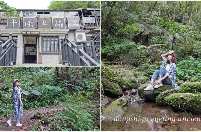 [新北 東勢格越嶺古道] 隱身平溪車站山城的奇幻旅程 穿越煤礦歷史的原始山徑