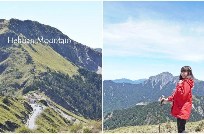 [南投 合歡山主東峰 ]全台灣最溫柔百岳 百岳散策旅程 新手挑戰百岳篇