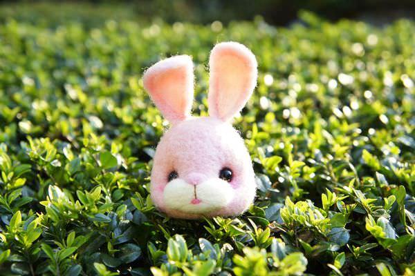 [小樹手作]粉嫩嫩小兔 羊毛氈客製化禮物